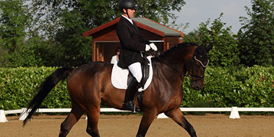 Classical Dressage Training in Kent by Trainer and Rider Mark Butler
